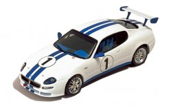 "Maserati Trofeo ""Presentation Version"" 2003 (White & Blue Stripes)"